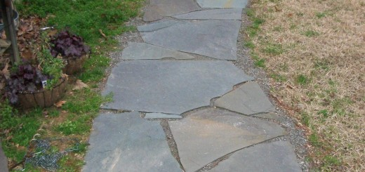 Blue stone path, cut to fit with screenings in the joints.